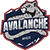 Avalanche Next